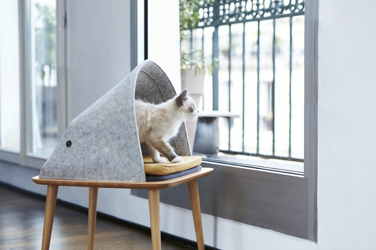 Cat bed at the same height as a windowsill